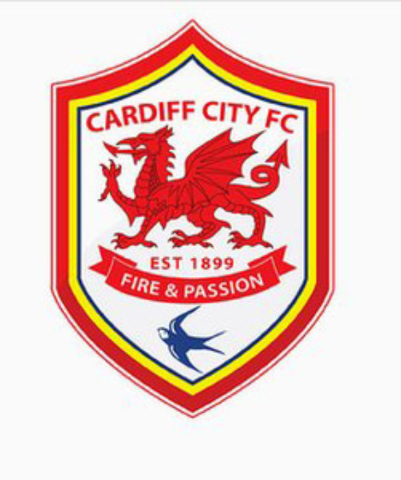 Cardiff City New Logo
