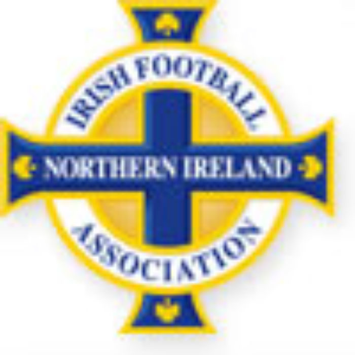 Irish FA logo