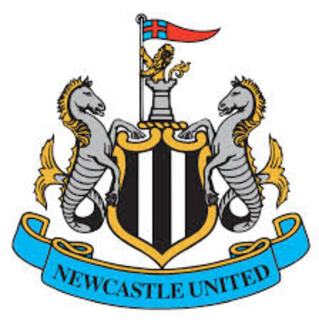 Newcastle United subject to £300 million takeover