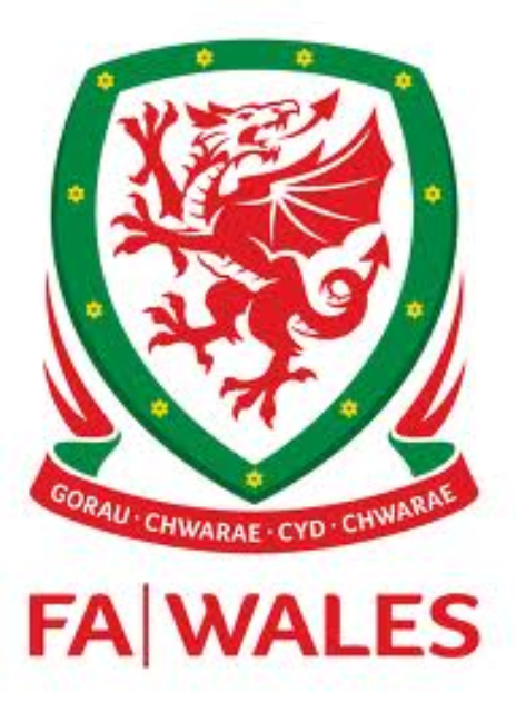 Wales unveil new kit ahead of France game