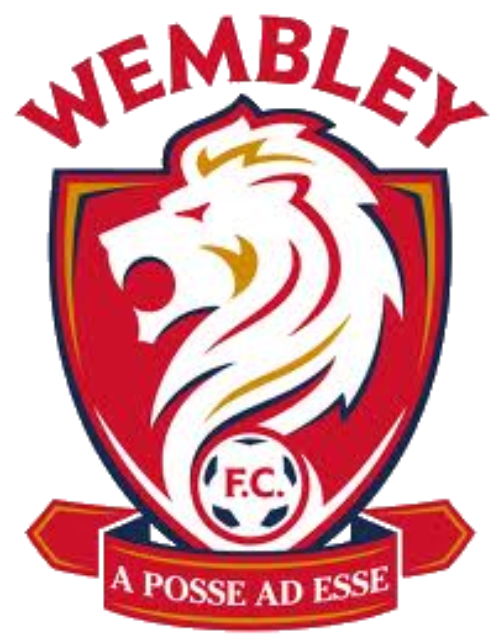 Wembley FC 'face bankruptcy' following action from the FA